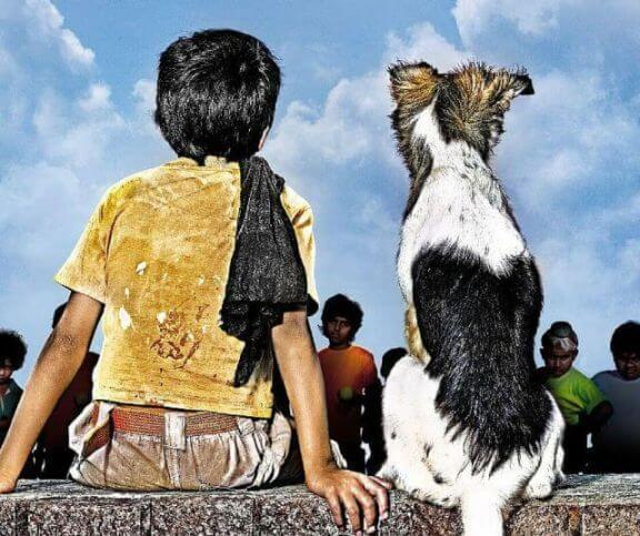 dog breed in chillar party