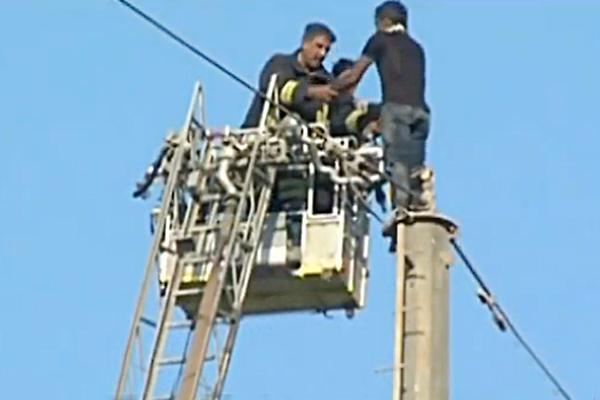 man climbed an electric pole