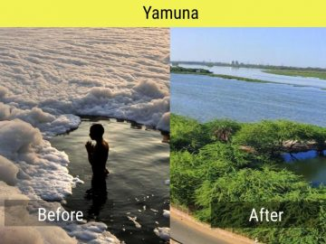 Yamuna-in-lockdown