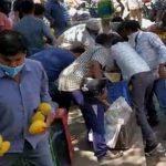 delhi mango seller