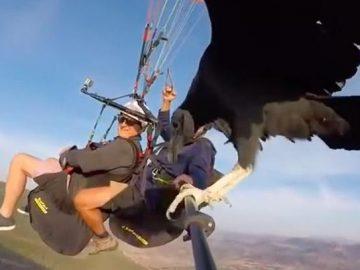 Spain paragliding